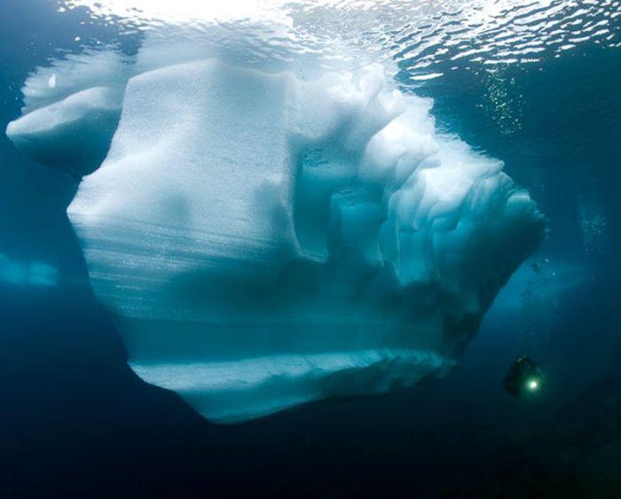 Плотность воды в жидком состоянии больше, чем в твердом, поэтому лед не тонет в воде, а всегда остается на поверхности.