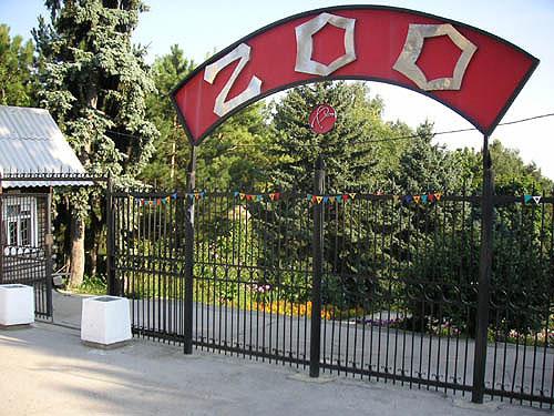 Первый в мире общественно-публичный зоопарк был открыт именно в Англии в 1829 году.
