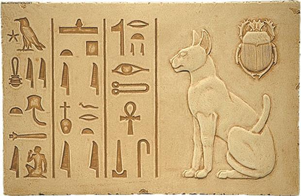 Кошка - удивительное домашнее животное, приносящее много радости и счастья. Узнаем самые интересные факты о кошках. В древнем Египте почитали кошек