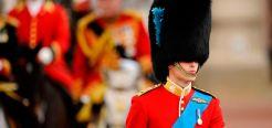 Шапки Английских гвардейцев сделаны из меха медведя Гризли, причем шапки офицеров сделаны из меха самцов (они эффектнее), а шапки рядовых из меха самок. Весят такие головные уборы около 3 кг.
