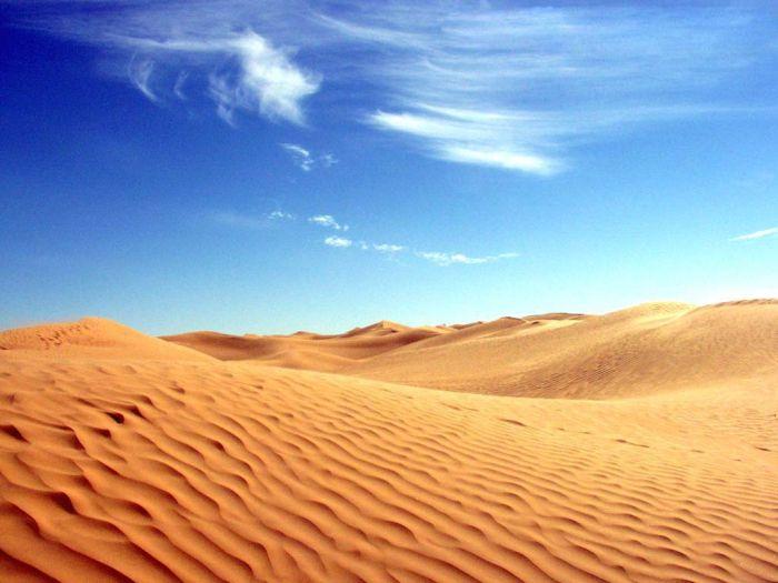 Самые интересные факты об Алжире, сахара, пустыня, государство,самое большое государство в Африке. Сахара занимает 80% площади Алжира
