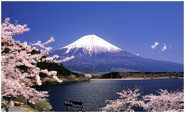 Факт, что Япония - это страна восходящего солнца. Самый интересные и удивительные факты о Японии, культуре, жителях и традициях этой прекрасной страны