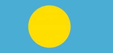 Республика Палау длительное время находилась под опекой Организации Объединенных Наций. Именно поэтому ее флагом являлся флаг ООН, а затем флаг Подопечной территории Тихоокеанские острова. Современный вид флага Палау возник в 1981 г. Образцом при создании служил флаг Японии.
