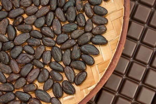 Шоколад — одно из самых желанных лакомств на Земле. Шоколад делают из какао-бобов. Самые интересные факты о шоколаде, о нашем любимом какао лакомстве. Какао-бобы нужны для шоколада сколько