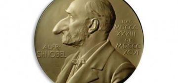 Шнобелевская премия - Наиболее известная из премий за сомнительные научные достижения. По названию нетрудно догадаться, что она пародирует Нобелевскую.