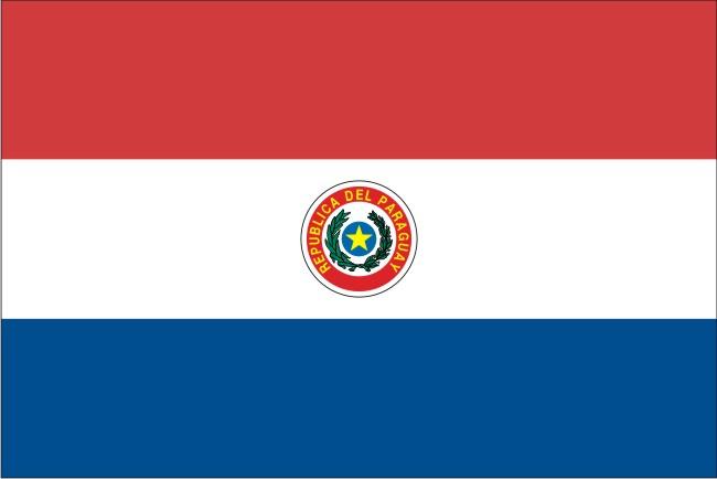 Парагвайский флаг был принят в ноябре 1842 года. На полотнище флага Парагвая, с лицевой стороны, изображена национальная эмблема — на синем диске пятиконечная желтая звезда, обрамлена венком.